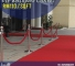 Vip Walkway Carpet Cheapest In M'sia From Rm110